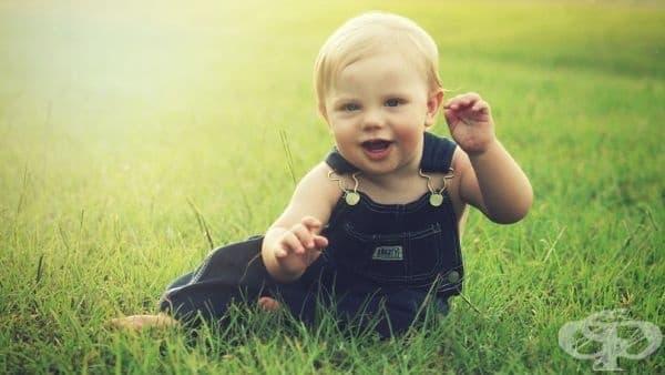 Облекчаване на документацията при кандидатстване за финансовите помощи за малчугани, както и тези по Закона за закрила на детето през есента на 2017 г.    - изображение