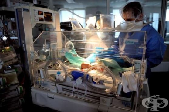 От 1 юли 2019-а бащите на недоносени деца във Франция могат да ползват допълнителен отпуск до 30 дни - изображение