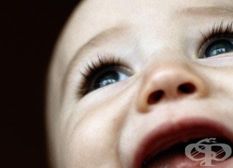 Правни и социални последици от осиновяването - изображение