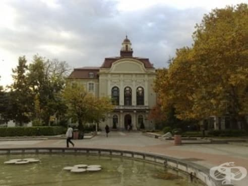 През следващите две години в Пловдив ще предложат седем нови социални услуги - изображение