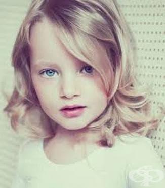 Процедура за действие при наличие на дете в риск - изображение