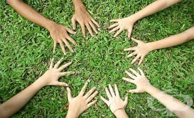 Работната група прие концепцията на закона за социалните услуги - изображение