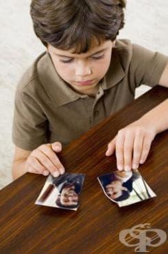 Социален статус на родителите. Развод - изображение