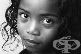 Социална подкрепа за приемните семейства по Закона за закрила на детето - изображение