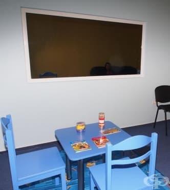 """В Смолян откриват """"Синя стая"""" за деца, жертви на престъпление - изображение"""
