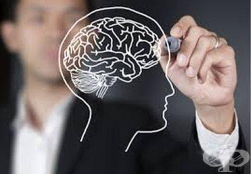 Задължително настаняване  и лечение на лица - изображение