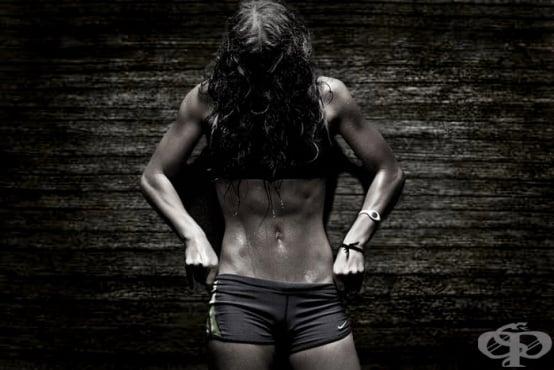 Високоинтензивна кръгова тренировка за гърди, бицепс и трицепс за ускоряване на метаболизма - изображение