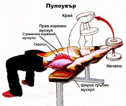 Упражнение за разширяване на гръдния кош -  пулоувър - изображение