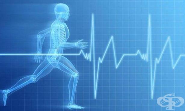 Биостимулиране и възстановяване в спорта - изображение