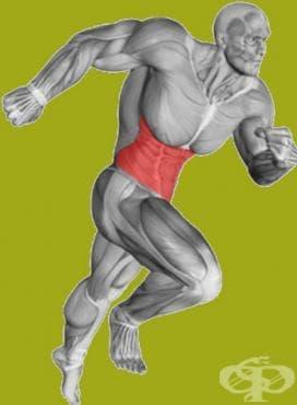 Тренировки за напреднали – корем - изображение