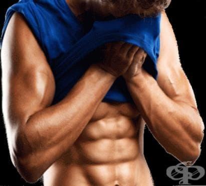 Силова тренировка за гърди и корем - изображение