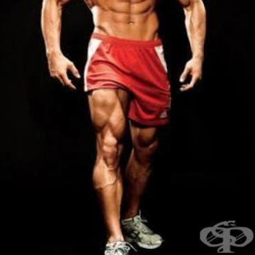 Върховна тренировъчна програма за крака - изображение