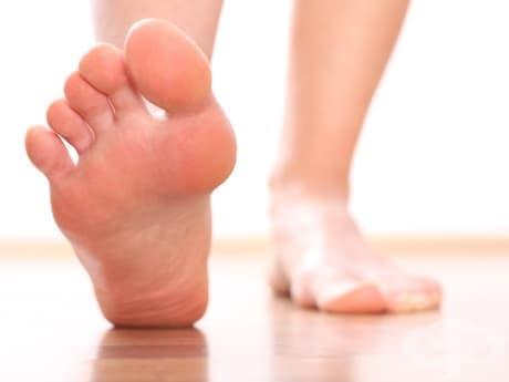 5 упражнения за ходилата, с които да премахнете болките в коленете, тазобедрените стави и гърбa - изображение