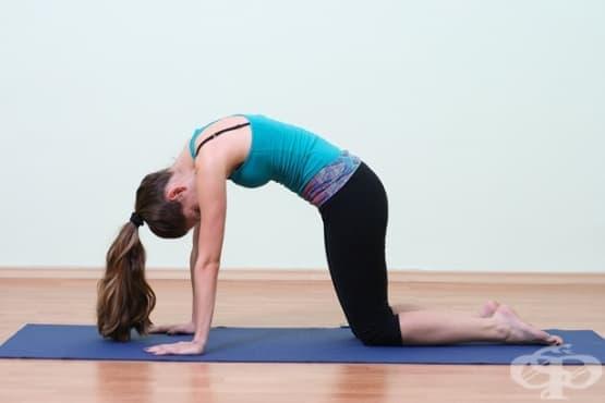 7 основни рехабилитационни упражнения, с които да преборите болките във всяка част от тялото - изображение