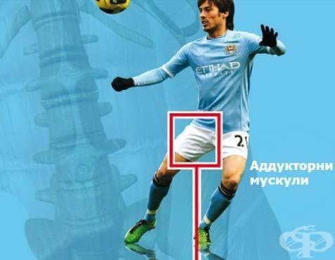 Футболна болест - ARS комплекс - изображение