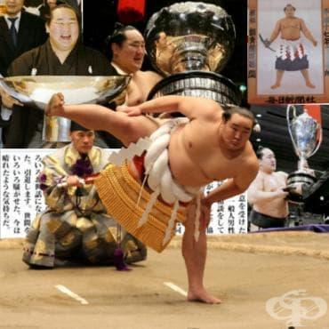 Асашорю – сумо - изображение