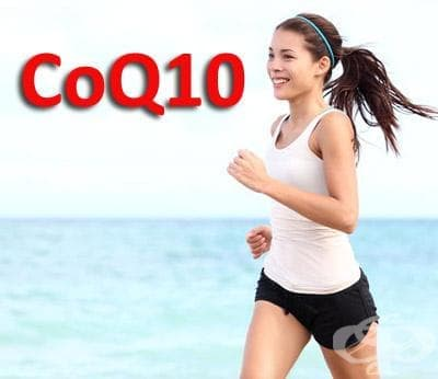 Коензим Q10 като спортна добавка - изображение
