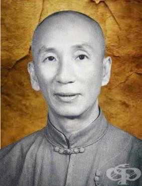 Ип Ман – Винг Чун - изображение