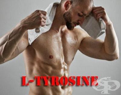 L-тирозин като спортна добавка - изображение