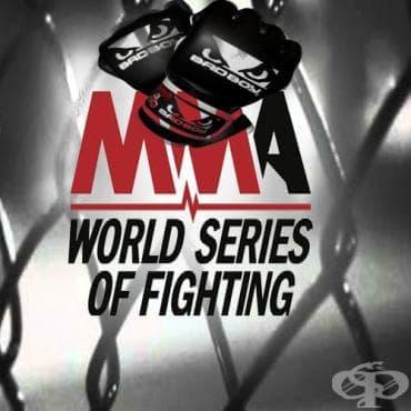 Световни бойни серии - изображение