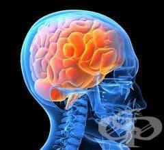 Травми на главата - изображение
