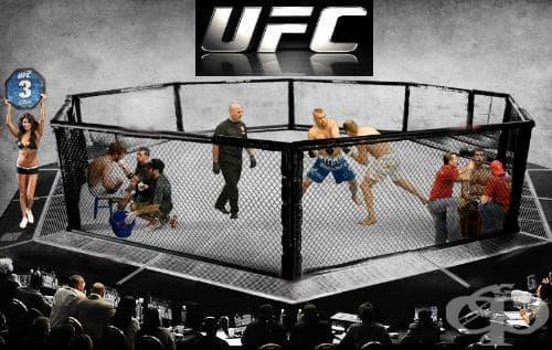 Върховен боен шампионат (UFC) - изображение