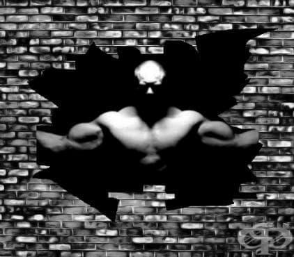 Най-добрите упражнения за сила – Част 1 - изображение
