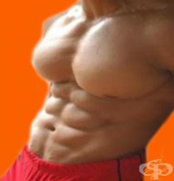 Взривяваща тренировка за гърди - изображение