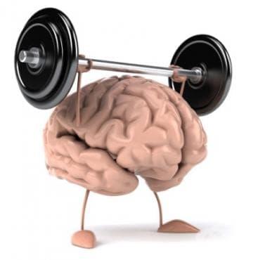 Влияние на физическата активност върху нервната система - изображение