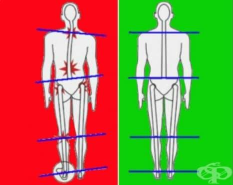 Балансирайте тялото си с тези упражнения за гърба - изображение