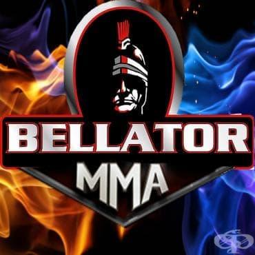 Белатор ММА - изображение