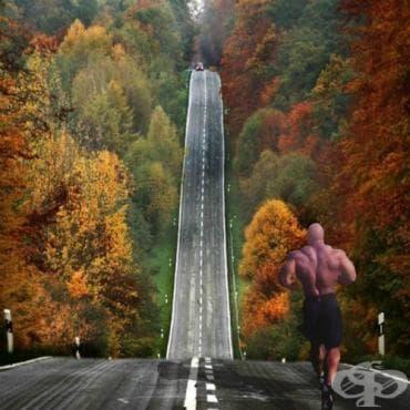 Тичане за бодибилдъри - изображение