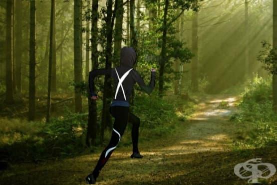 Трите типа кардио, които са ви нужни за развиване на енергийните пътища на тялото - изображение