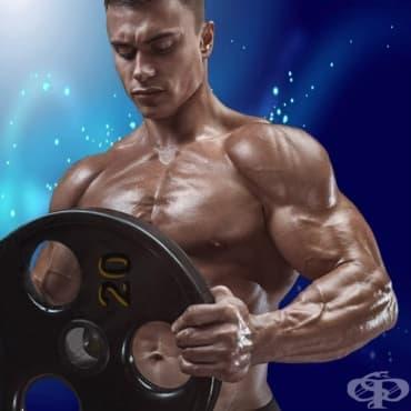 Цялостна тренировка за мускулна маса с диск от щанга - изображение