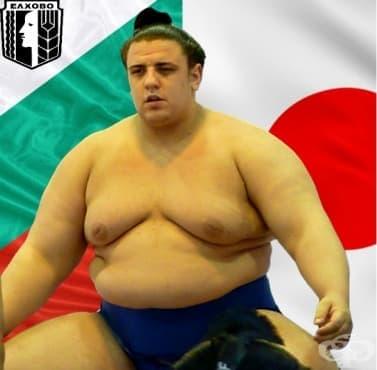 Даниел Иванов (Аоияма) – сумо - изображение