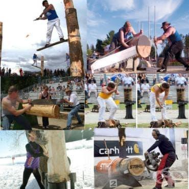 Състезание за дървосекачи - изображение