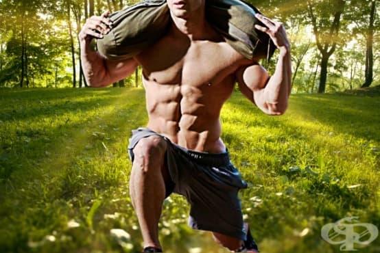 Фитнес тест – 12 неща, които всеки трениращ човек трябва да може да направи - изображение