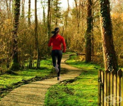 5 форми на кардио тренировка за бързо горене на мазнините - изображение