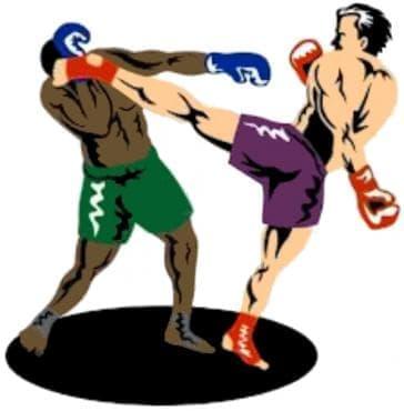 Комбинации – ляв-десен прав в главата, ляв страничен хай кик - изображение
