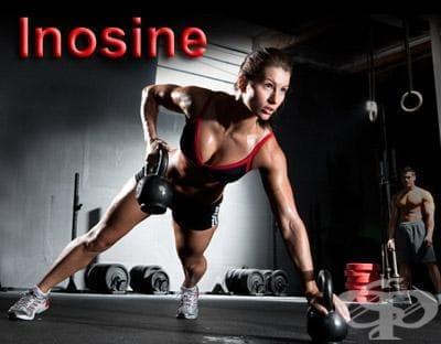 Инозин като хранителна добавка в спорта - изображение