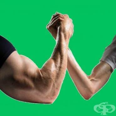 Истината за големите ръце - изображение