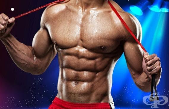 Истината за коремните мускули - изображение