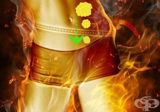 Тренировка за изгаряне на мазнини без бягане, само за 5 минути - изображение
