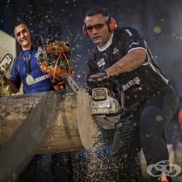 Джейсън Уинярд – състезания за дървосекачи - изображение