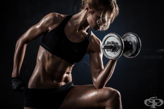 Как да си направим собствен фитнес у дома? - изображение