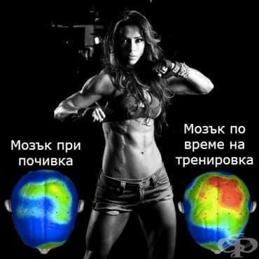 Какво се случва с тялото по време на тренировки? - изображение