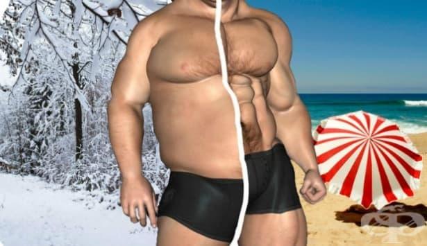 Най-добрата стратегия за изчистване на мазнините, без загуба на мускулна маса - изображение
