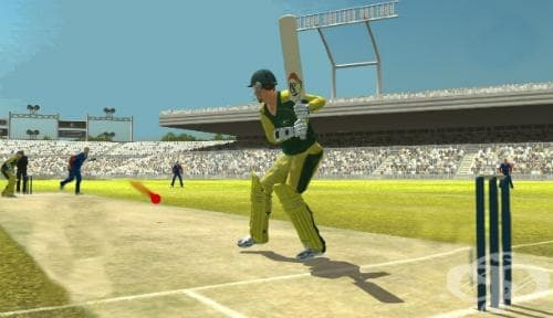Крикет - изображение