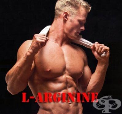 L-аргинин като спортна добавка - изображение