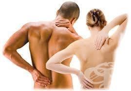 Лесни упражнения при болки в гърба и леки гръбначни изкривявания - изображение